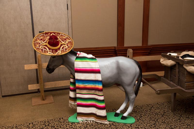 Seniore Donkey